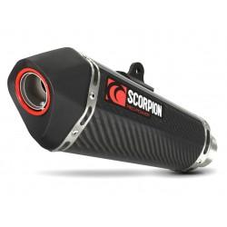 ESCAPE BMW S1000 RR 09 10 11 12 13 SCORPION SERKET CARBONO